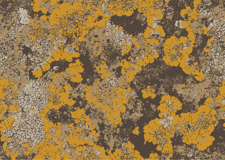 Vintage old wall surface covered with yellow moss. Abstract background.