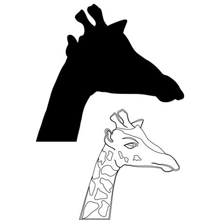 Abstract illustration, black and white silhouette of giraffe. The giraffe on white background. Illustration