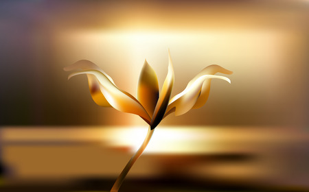 Precious Golden flower in the hour of dawn. Lily Lilium delicate and fragile at Golden hours.