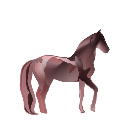 burgundy: Vintage mystical picture horse in scarlet colors on white background. Burgundy silk drape flowing like blood.