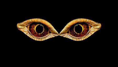Terrible horrible eyes fantastic animal or bird on a black background. Eyes dinosaur or snakes.