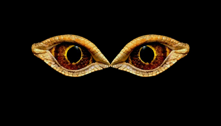 Terrible horrible eyes fantastic animal or bird on a black background. Eyes of dinosaur or snakes. Illustration