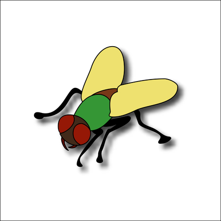 Cartoon fly, insect with bright colors. Housefly volume with shadow. Illustration