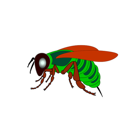 Cartoon fly, insect with bright colors. Housefly volume with shadow. Ilustracja