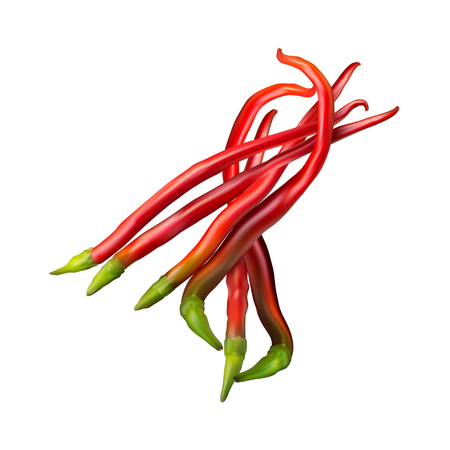 Realistic image of Mexican red hot chili pepper on white background. Ilustração