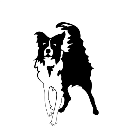 Silhouette of funny playful little black and white dog. Illustration