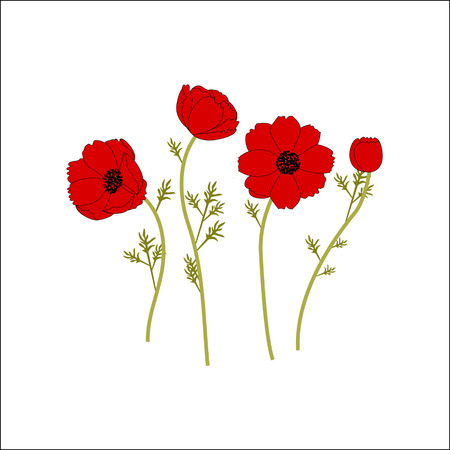 Gentle floral background with red poppies. Patterns for textiles. floral background.
