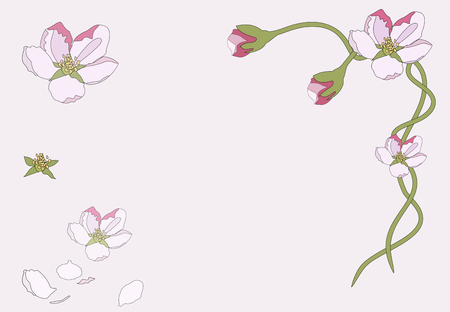 Pink cherry blossom sakura flowers in a Japanese style. Spring background Vector illustration.