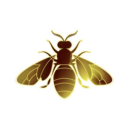 白い背景に夏の日の黄金の蜂の子宮。