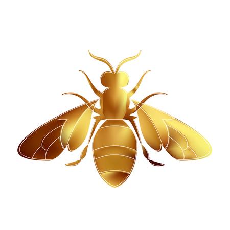 Golden honey bee uterus of summer day on white background. Banco de Imagens - 97587929