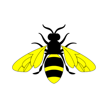 Golden honey bee uterus of summer day on white background. Banco de Imagens - 97587931