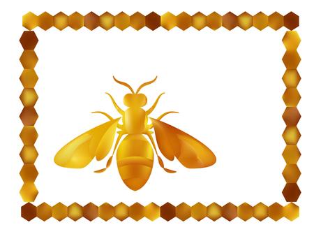 Golden honey bee uterus of summer day on white background. Banco de Imagens - 97587939