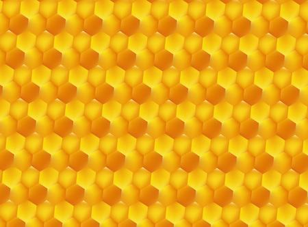Golden honey bee uterus of summer day on white background. Banco de Imagens - 97587937