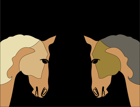 Cute silhouette muzzle purebred Arabian horses in brown colors