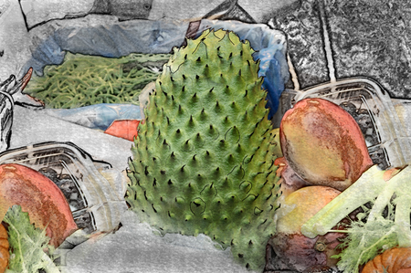 Vintage illustration of the exotic fruit Guanabana on the market table on a blurred background Stock Photo