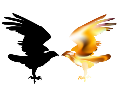 Fire bird eagle in flight as a symbol of power and freedom. Illustration