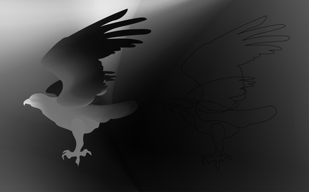 Fire bird eagle in flight as a symbol of power and freedom. black and white silhouette