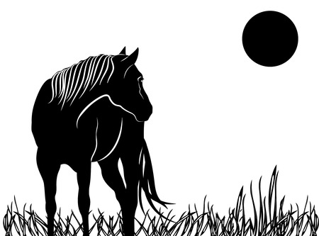 Silhouette black and white beautiful Arabian horse with developing mane Stock Illustratie