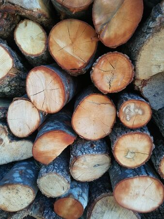 The pile of firewood for kindling a stove, fireplace, barbecue or bonfire. Imagens
