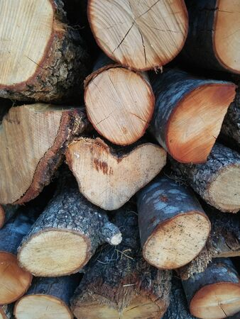 The pile of firewood for kindling a stove, fireplace, barbecue or bonfire