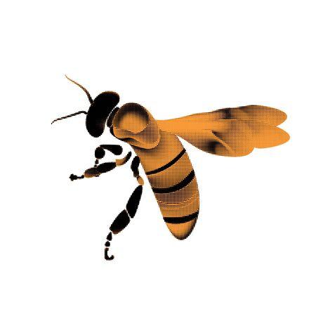 Golden honey bee uterus of summer day on white Banco de Imagens - 130986412