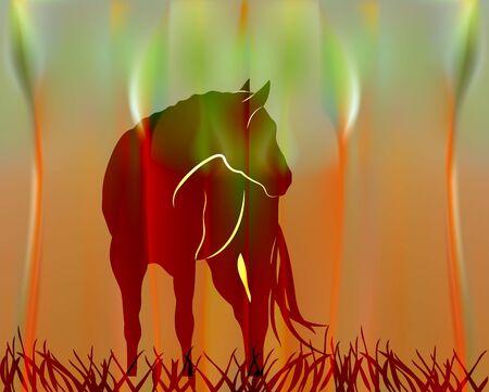 Fabulous Sunny  with cartoon horse. Banco de Imagens - 142122210