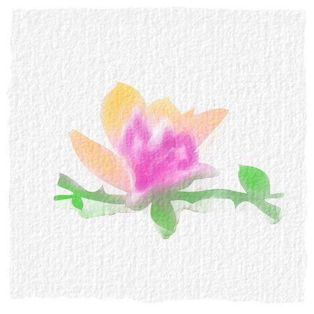 Watercolor pattern. Pink flower petal. watercolor drawing. Pink flowers Standard-Bild