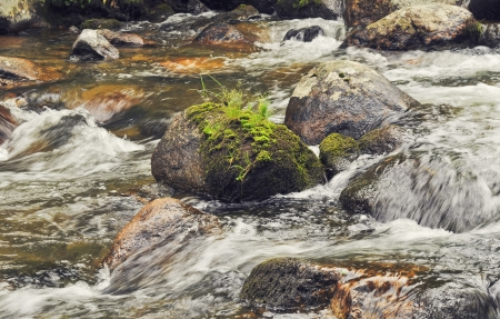 Large stones covered with moss. A strong current of the river. Stock Photo - 14388578
