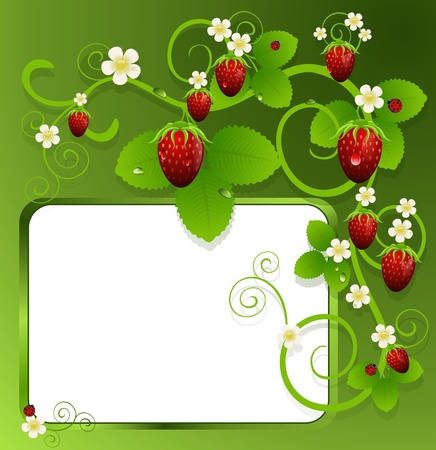 entwined: Green background with strawberries entwined