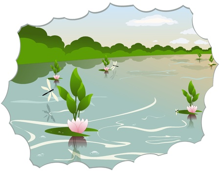 illustration of a quiet pond with water lilies and dragonflies Stock Vector - 17534851
