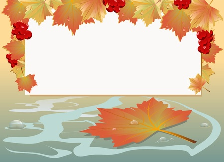 Autumn maple leaves with drops and background for text Stock Vector - 17534852