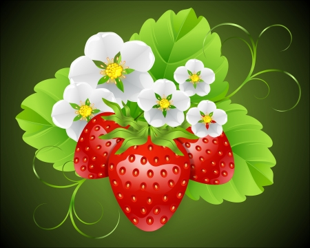 Strawberries surrounded by flowers Vector
