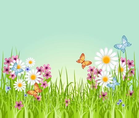 Beau fond d'été avec l'herbe verte prairie et fleurs