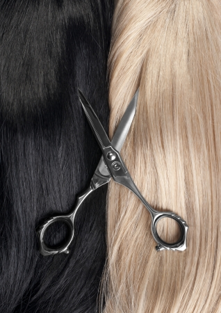 blond hair: Cut a long straight black and blond hair Stock Photo