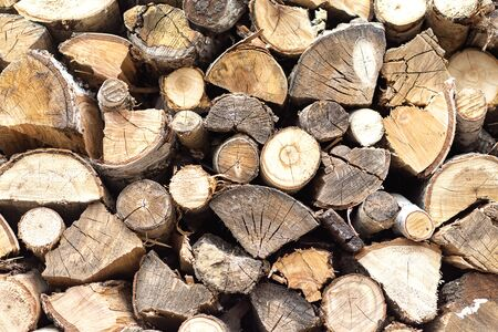 Birch and pine firewood are neatly stacked for outdoor storage.