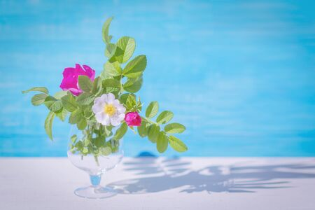 Pastel colors. Bouquet of rosehip flowers in a glass goblet, on a blue background. Selective focus