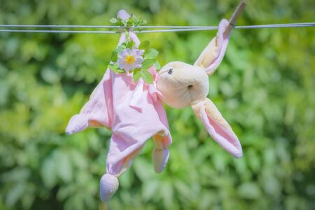Soft toy pink hare with a white rose flower hanging on a clothesline. Selective focus