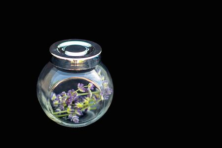 Lavender flowers in a glass jar with a metal lid on a black background. Selective focus. Copy space.