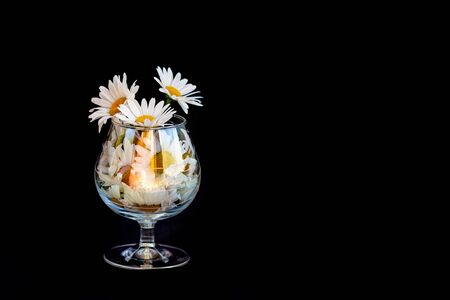 Chamomile flowers in a glass cup on a black background. Selective focus. Copy space.