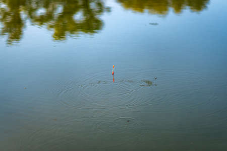 A float and aquatic insects are visible on the surface of the water. Stock fotó