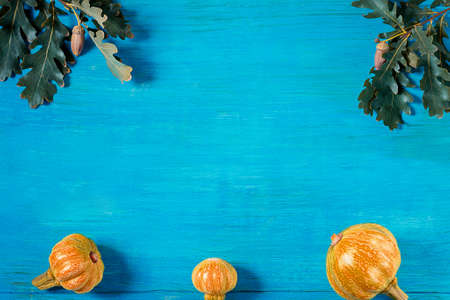 On a wooden blue background oak twigs and three pumpkins Stock fotó