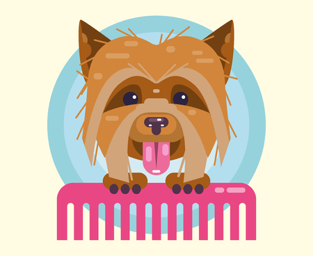 Dogs grooming. Haircut, combing and grooming pets. Illustration