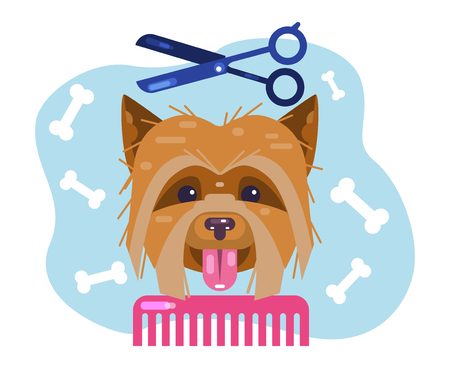 Dogs grooming. Haircut puppy. Salon for animals