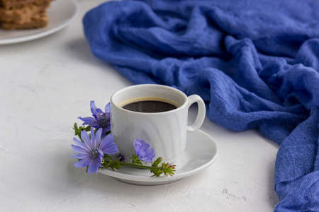 Diet drink chicory in a cup, coffee substitute. Cichorium intybus flower