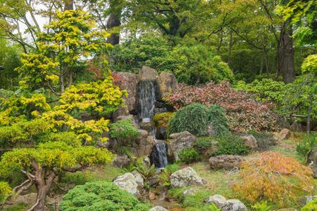 japanese tea garden: The Japanese Tea Garden in the Golden Gate Park, San Francisco.