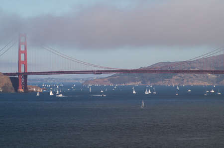 san francisco bay: View of the Golden Gate Bridge and the San Francisco Bay, from Lands End, USA.
