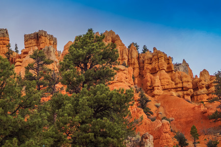 National Park Bryce canyon , Utah, USA