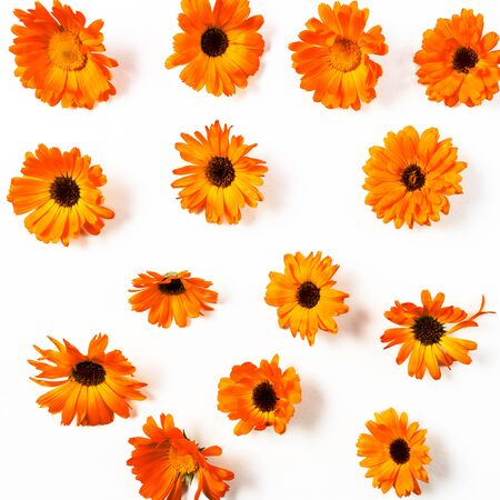 Floral pattern with orange flowers isolated on white background. Flat lay. Copy space. 写真素材