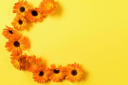 Floral pattern of orange flowers on yellow background. Flat lay. Copy space. 写真素材