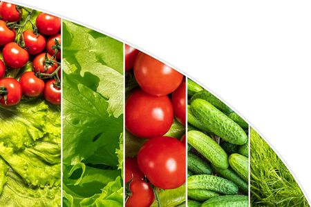 Food collage of various fresh vegetables in the form of vertical stripes, with copy space for text. Healthy food concept. Reklamní fotografie